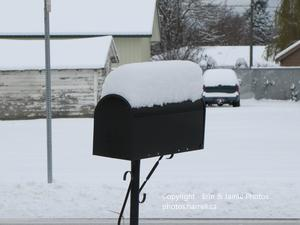 Mailbox Covered in Snow